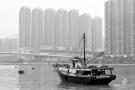 hongkongdsc_5549