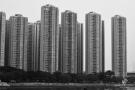 hongkongdsc_5551