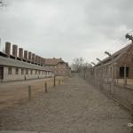 AuschwitzBirkenauDSC_7771