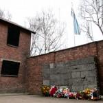 AuschwitzBirkenauDSC_7907