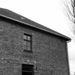 AuschwitzBirkenauDSC_7913