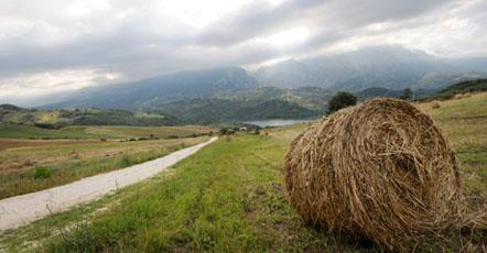 Il lago di Casoli-ness