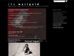 Per The Marigold Band non si vive di solo myspace